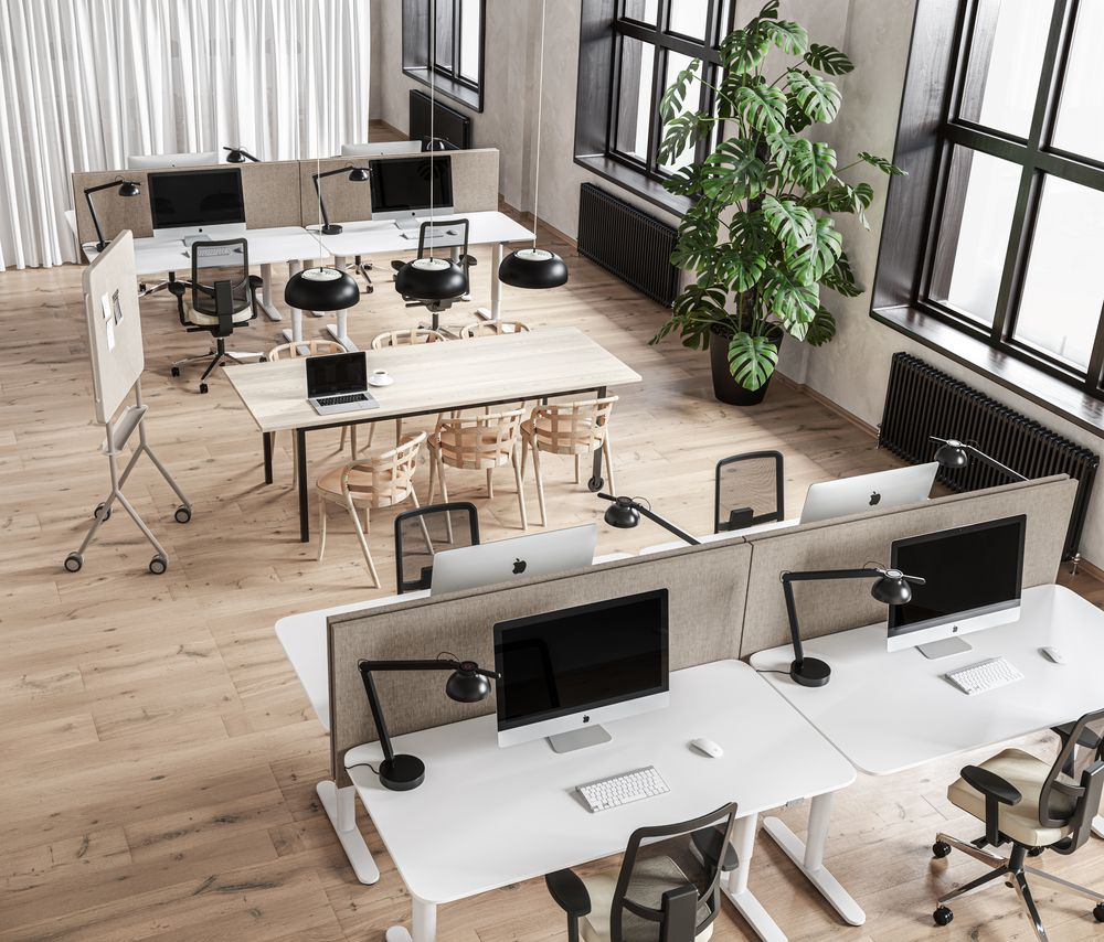 Open office space with collaborative and individual workspaces.